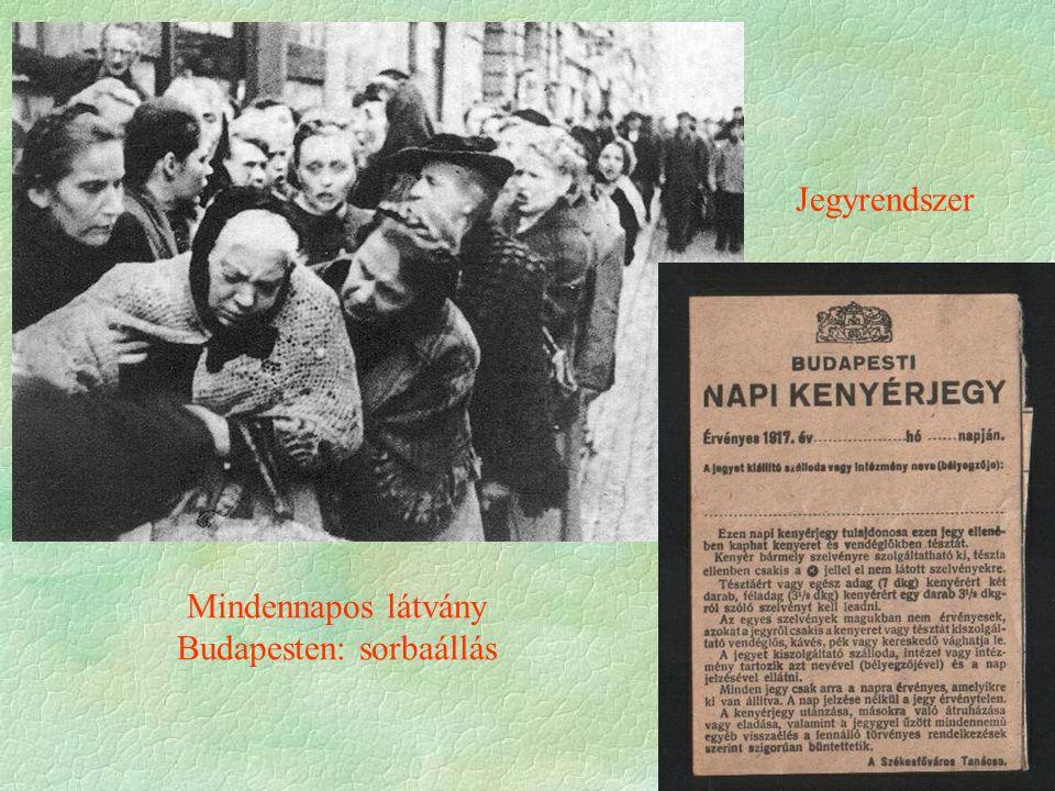 Mindennapos látvány Budapesten: sorbaállás Jegyrendszer