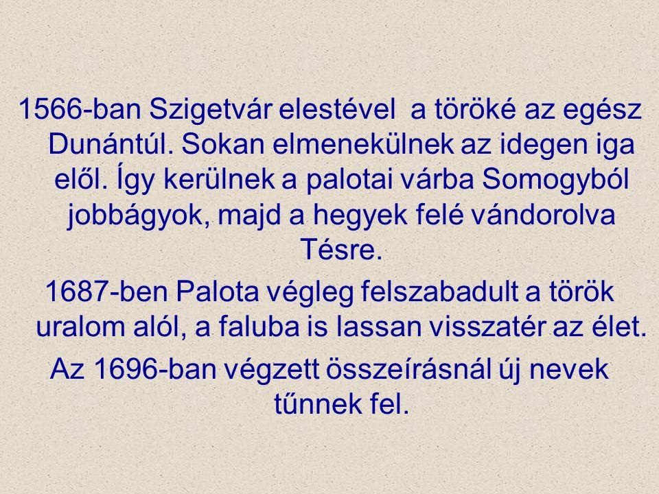 1566-ban Szigetvár elestével a töröké az egész Dunántúl. Sokan elmenekülnek az idegen iga elől. Így kerülnek a palotai várba Somogyból jobbágyok, majd
