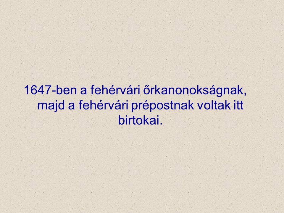 1647-ben a fehérvári őrkanonokságnak, majd a fehérvári prépostnak voltak itt birtokai.