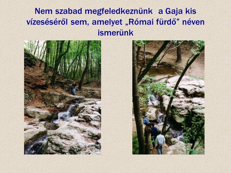 """Nem szabad megfeledkeznünk a Gaja kis vízeséséről sem, amelyet """"Római fürdő"""" néven ismerünk"""