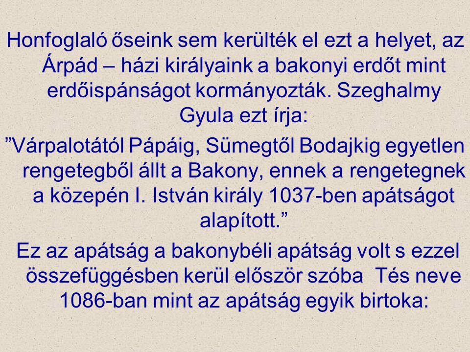 Honfoglaló őseink sem kerülték el ezt a helyet, az Árpád – házi királyaink a bakonyi erdőt mint erdőispánságot kormányozták. Szeghalmy Gyula ezt írja:
