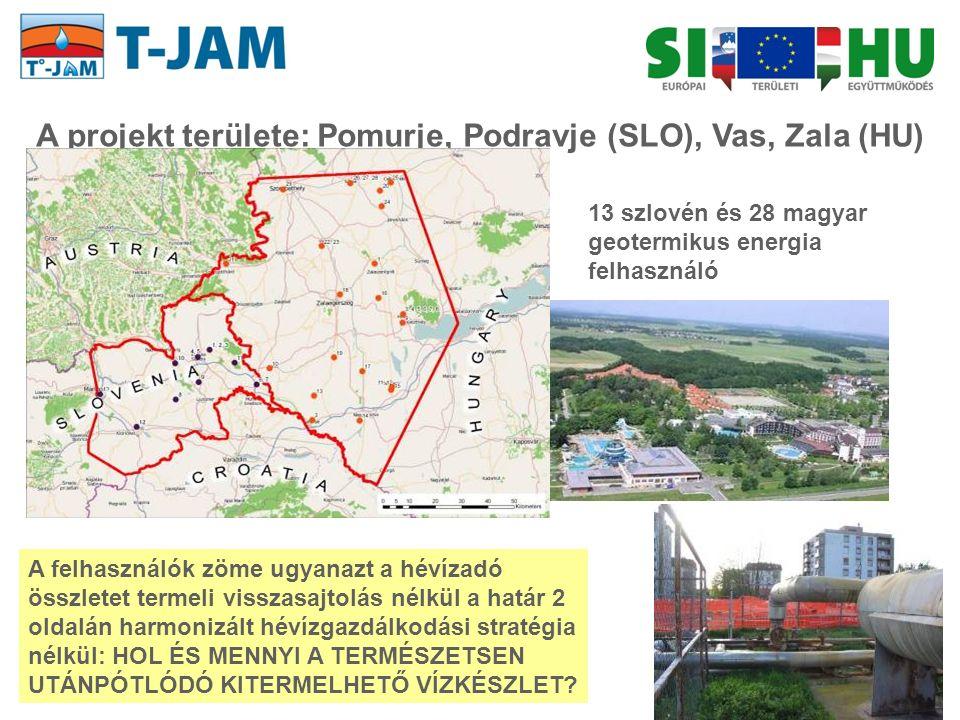 13 szlovén és 28 magyar geotermikus energia felhasználó A projekt területe: Pomurje, Podravje (SLO), Vas, Zala (HU) A felhasználók zöme ugyanazt a hév