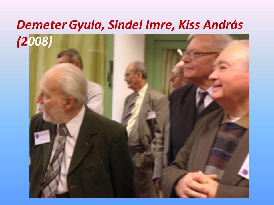 Demeter Gyula, Sindel Imre, Kiss András (2008)