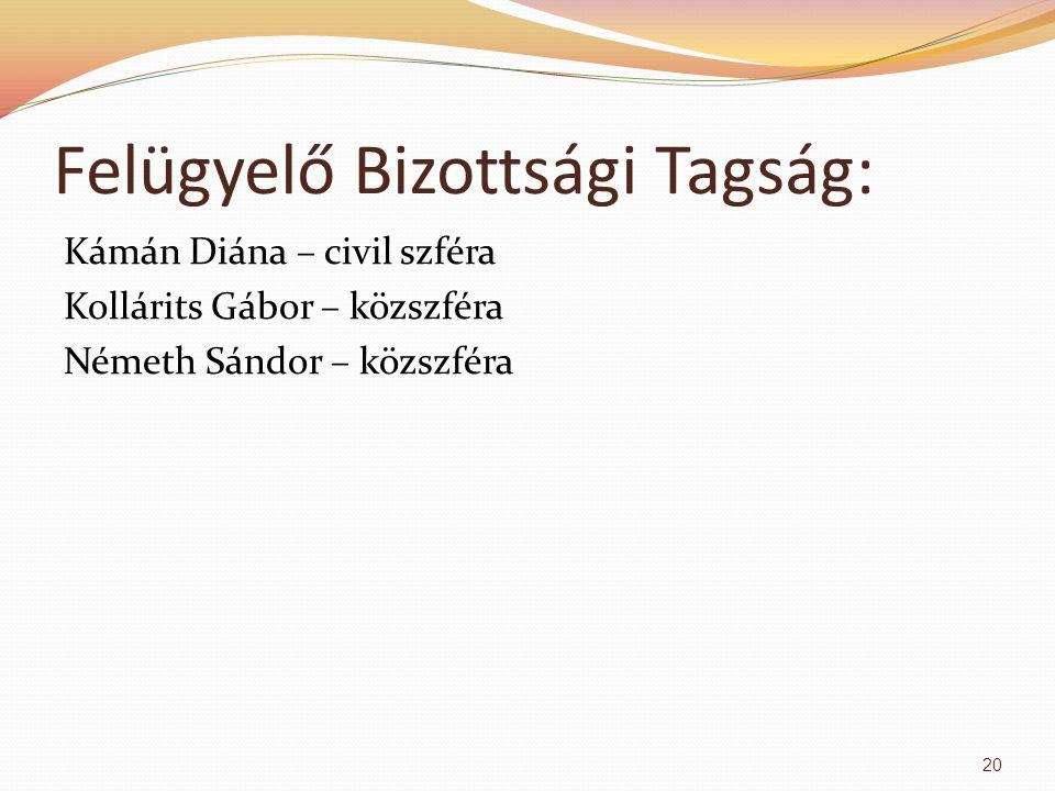 Felügyelő Bizottsági Tagság: Kámán Diána – civil szféra Kollárits Gábor – közszféra Németh Sándor – közszféra 20