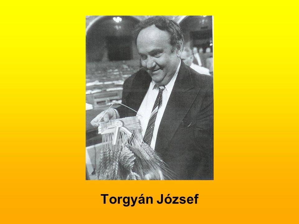 Torgyán József
