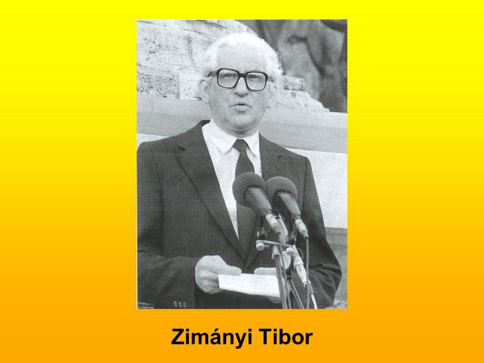 Zimányi Tibor