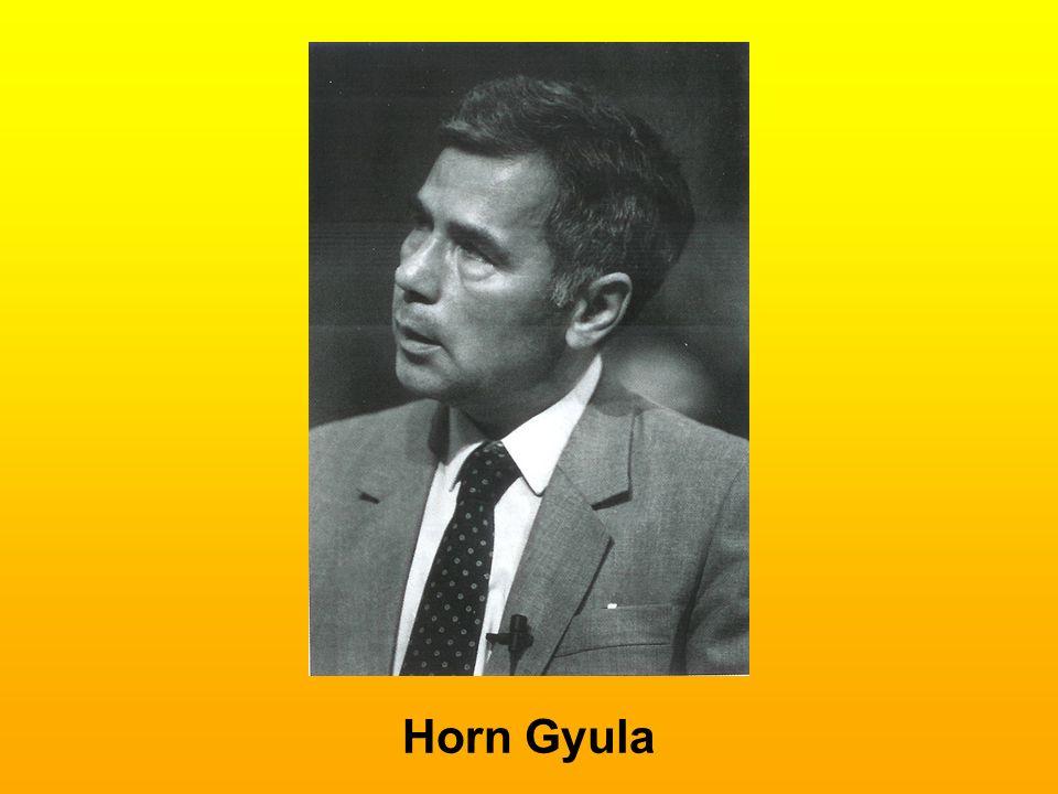 Horn Gyula