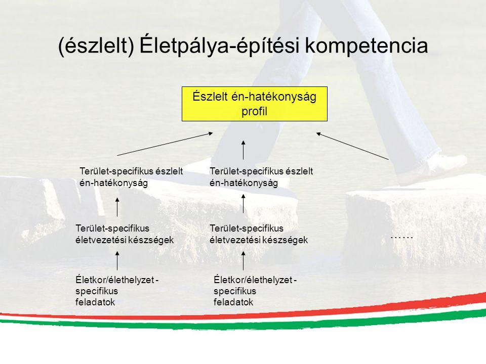 (észlelt) Életpálya-építési kompetencia Életkor/élethelyzet - specifikus feladatok Terület-specifikus életvezetési készségek Terület-specifikus észlelt én-hatékonyság Életkor/élethelyzet - specifikus feladatok Terület-specifikus életvezetési készségek Terület-specifikus észlelt én-hatékonyság …… Észlelt én-hatékonyság profil