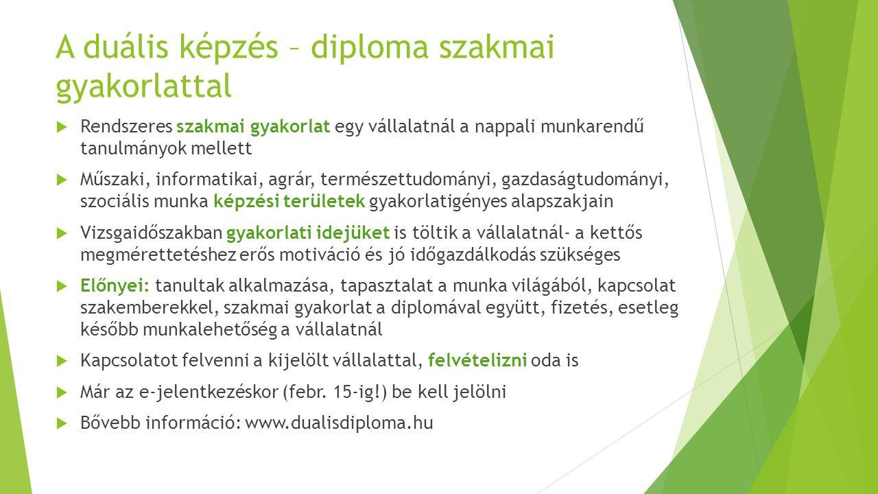 A duális képzés – diploma szakmai gyakorlattal  Rendszeres szakmai gyakorlat egy vállalatnál a nappali munkarendű tanulmányok mellett  Műszaki, info