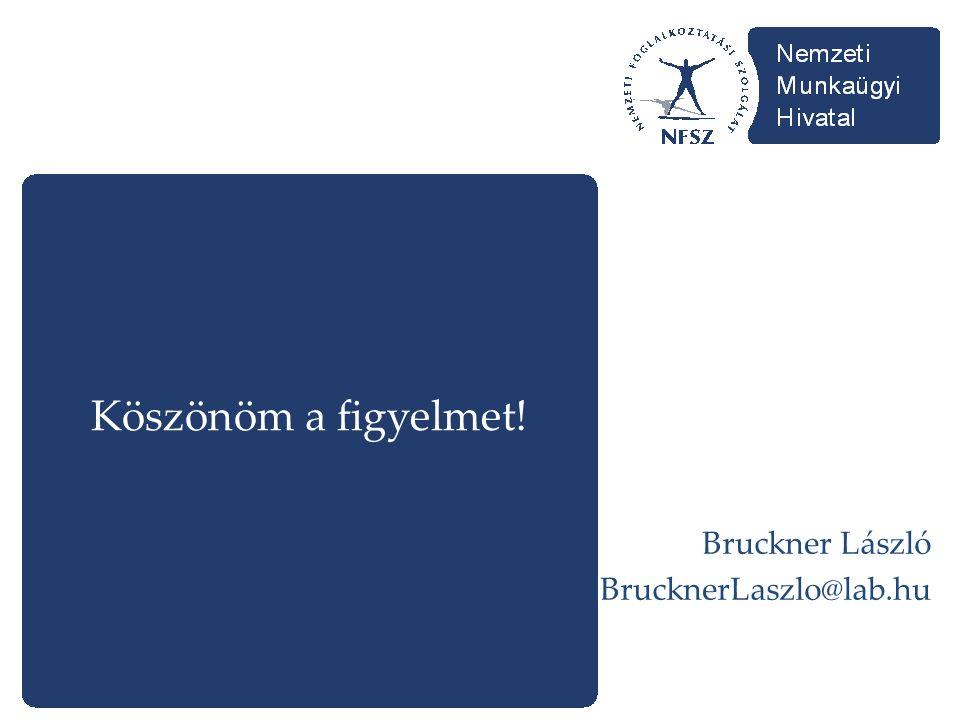 Köszönöm a figyelmet! Bruckner László BrucknerLaszlo@lab.hu