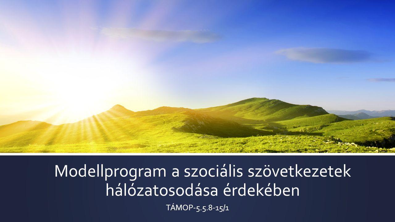 Modellprogram a szociális szövetkezetek hálózatosodása érdekében TÁMOP-5.5.8-15/1