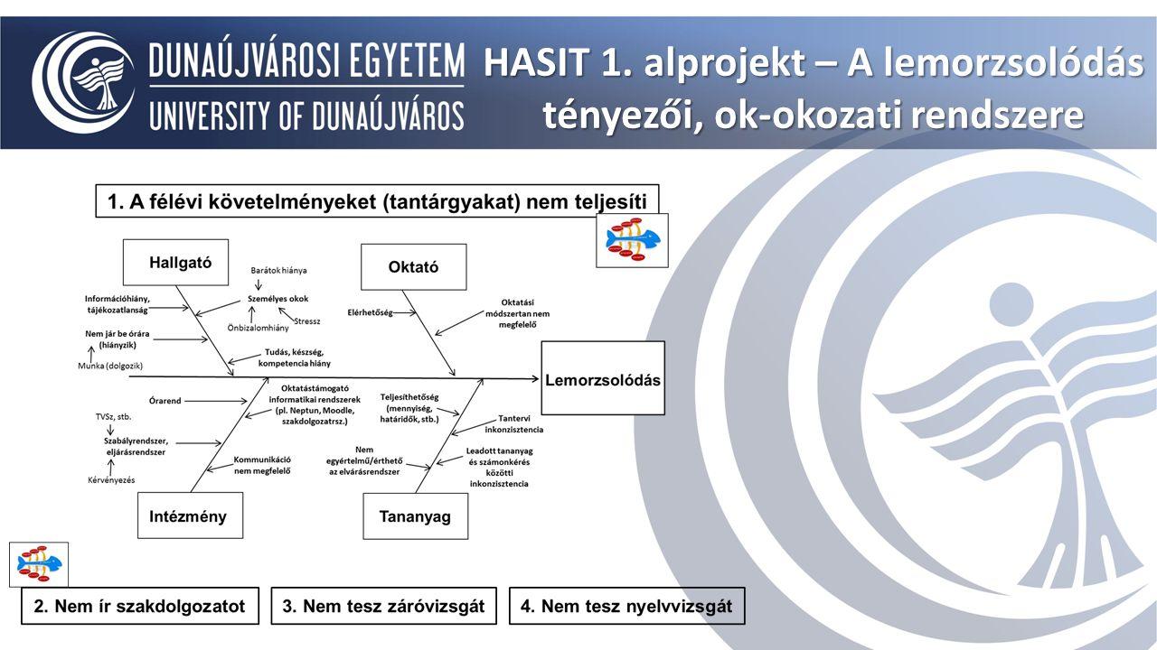 HASIT 1. alprojekt – A lemorzsolódás tényezői, ok-okozati rendszere