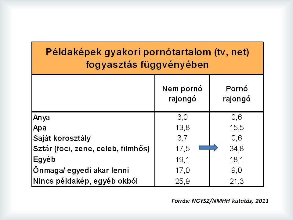 Forrás: NGYSZ/NMHH kutatás, 2011