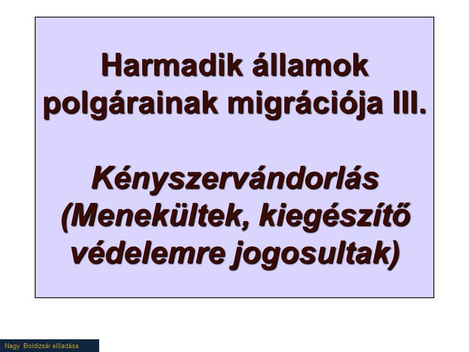Nagy Boldizsár előadása Harmadik államok polgárainak migrációja III.