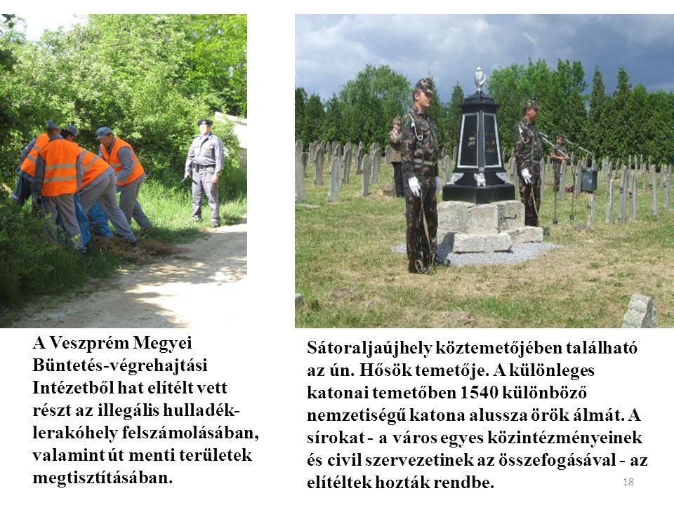 A Veszprém Megyei Büntetés-végrehajtási Intézetből hat elítélt vett részt az illegális hulladék- lerakóhely felszámolásában, valamint út menti területek megtisztításában.