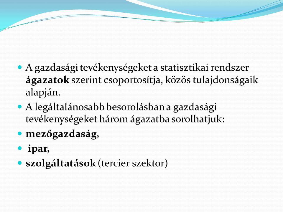 A gazdasági tevékenységeket a statisztikai rendszer ágazatok szerint csoportosítja, közös tulajdonságaik alapján.