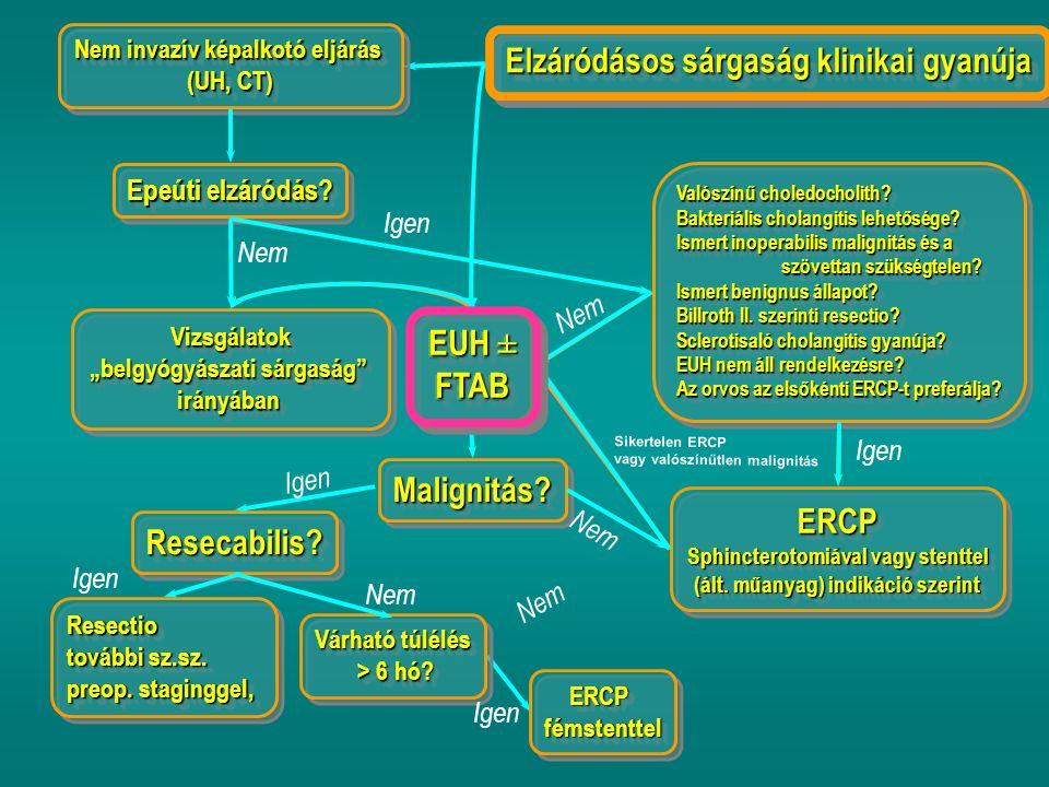 Elzáródásos sárgaság klinikai gyanúja EUH ± FTAB FTAB Nem invazív képalkotó eljárás (UH, CT) Nem invazív képalkotó eljárás (UH, CT) Epeúti elzáródás.
