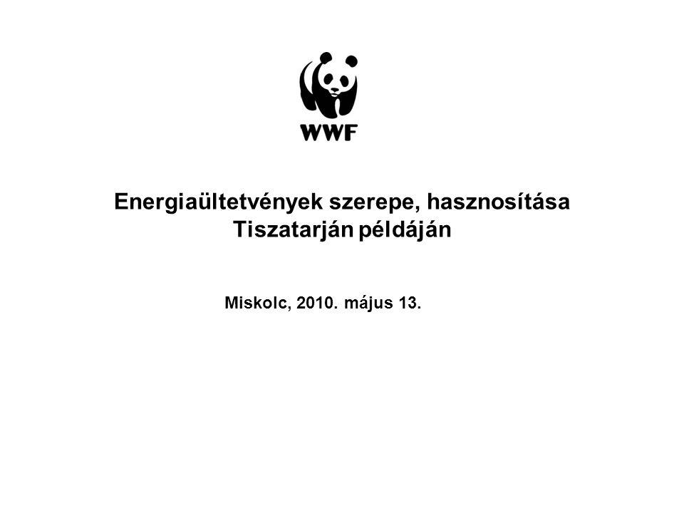 Energiaültetvények szerepe, hasznosítása Tiszatarján példáján Miskolc, 2010. május 13.