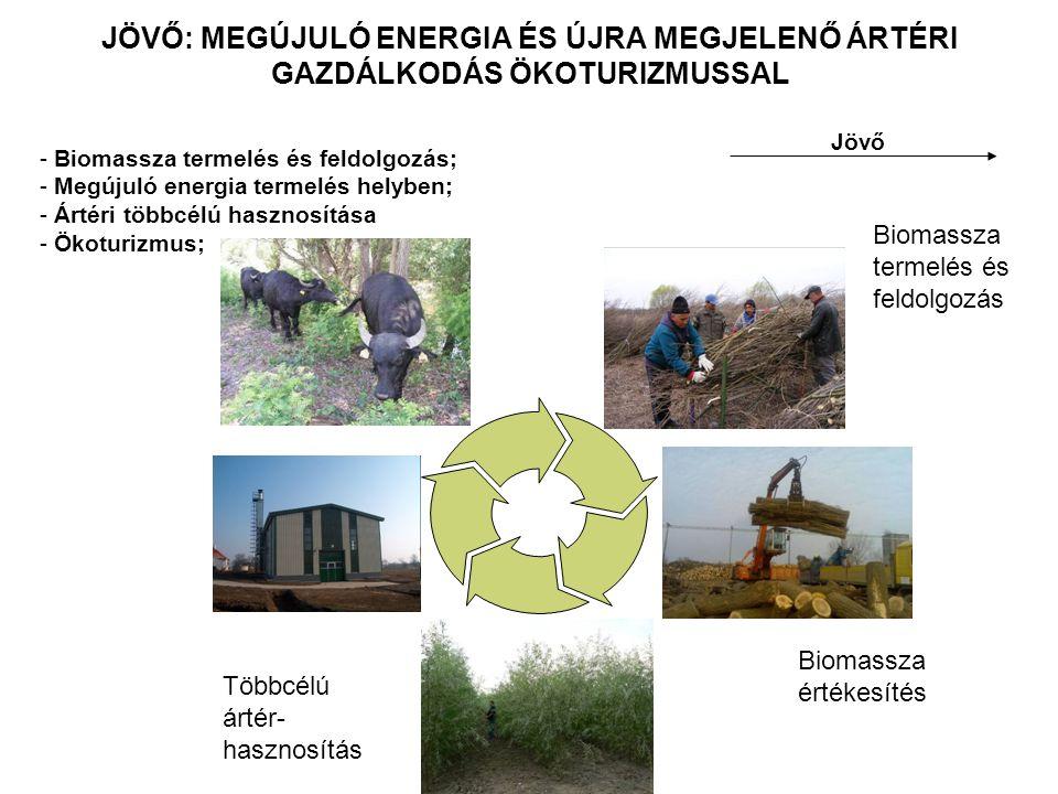 JÖVŐ: MEGÚJULÓ ENERGIA ÉS ÚJRA MEGJELENŐ ÁRTÉRI GAZDÁLKODÁS ÖKOTURIZMUSSAL Jövő - Biomassza termelés és feldolgozás; - Megújuló energia termelés helyb