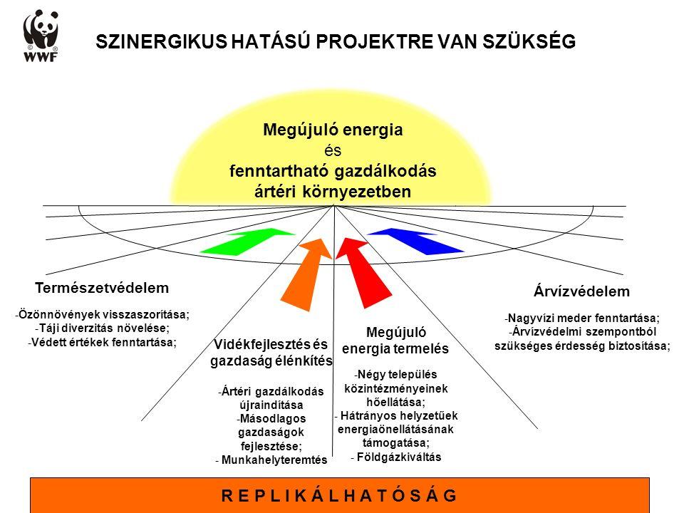 SZINERGIKUS HATÁSÚ PROJEKTRE VAN SZÜKSÉG Megújuló energia termelés -Négy település közintézményeinek hőellátása; - Hátrányos helyzetűek energiaönellát