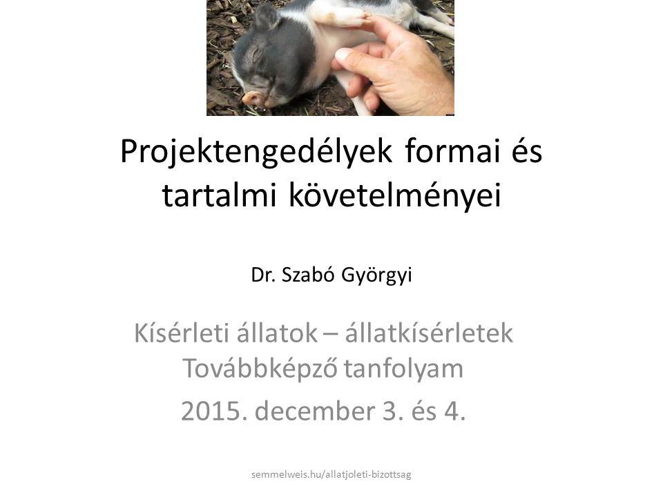 Projektengedélyek formai és tartalmi követelményei Dr.