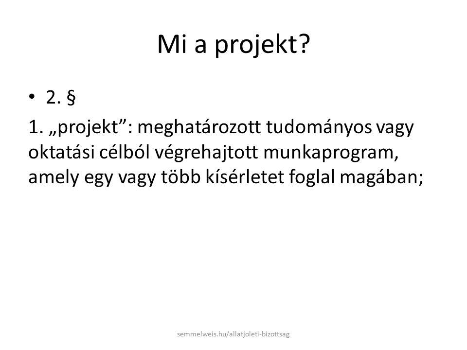 Mi a projekt. 2. § 1.