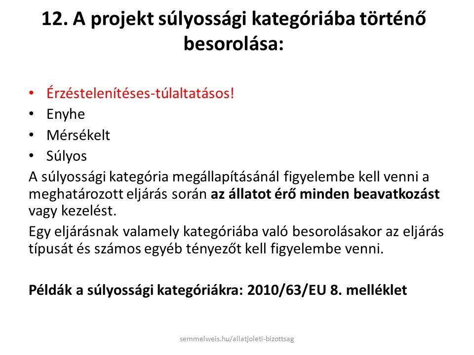 12. A projekt súlyossági kategóriába történő besorolása: Érzéstelenítéses-túlaltatásos.