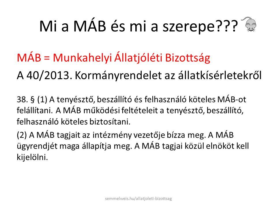 Mi a MÁB és mi a szerepe . MÁB = Munkahelyi Állatjóléti Bizottság A 40/2013.