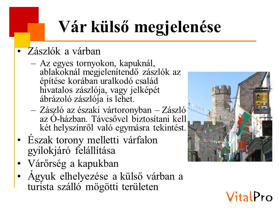Vár külső megjelenése Zászlók a várban –Az egyes tornyokon, kapuknál, ablakoknál megjelenítendő zászlók az építése korában uralkodó család hivatalos zászlója, vagy jelképét ábrázoló zászlója is lehet.
