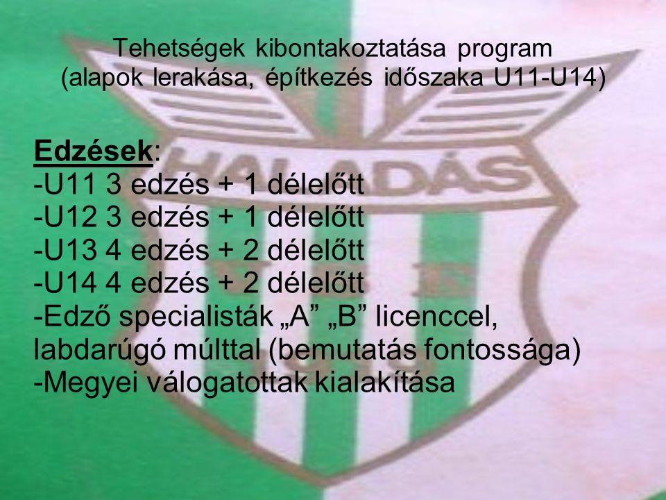 Tehetségek kibontakoztatása program (alapok lerakása, építkezés időszaka U11-U14) Edzések: -U11 3 edzés + 1 délelőtt -U12 3 edzés + 1 délelőtt -U13 4