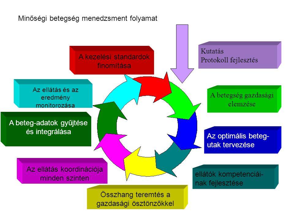 Kutatás Protokoll fejlesztés A betegség gazdasági elemzése Az optimális beteg- utak tervezése ellátók kompetenciái- nak fejlesztése Összhang teremtés a gazdasági ösztönzőkkel Az ellátás koordinációja minden szinten A beteg-adatok gyűjtése és integrálása Az ellátás és az eredmény monitorozása A kezelési standardok finomítása Minőségi betegség menedzsment folyamat