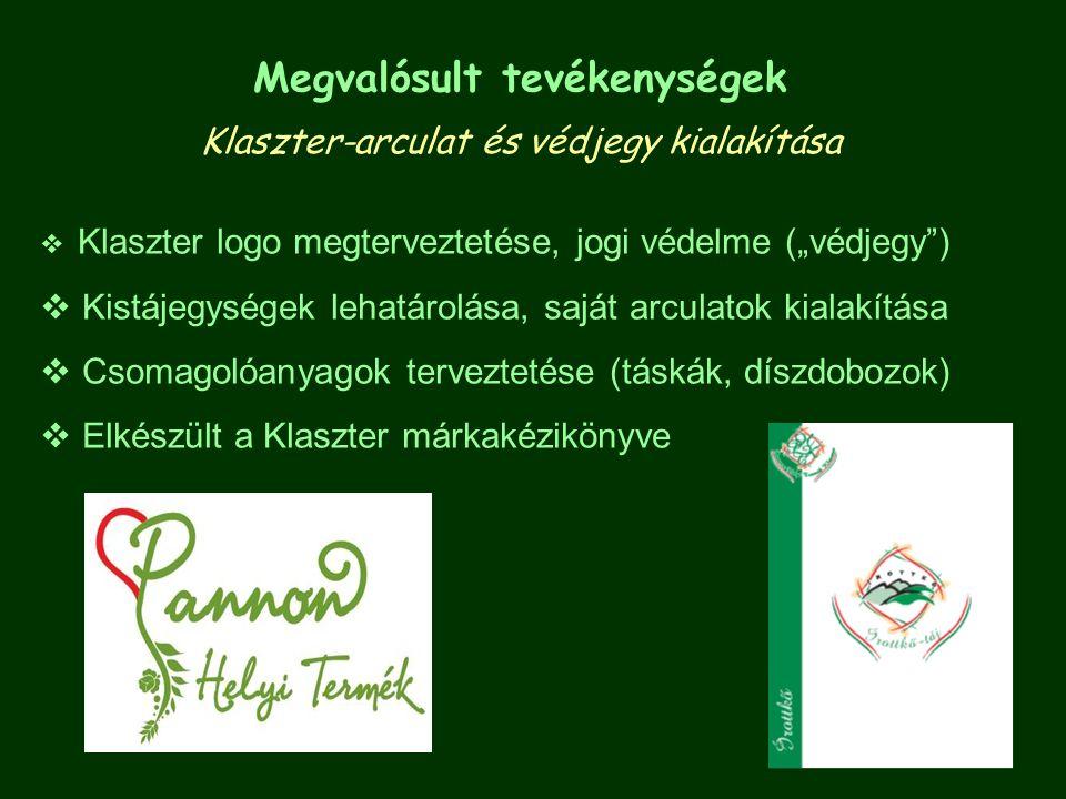 """Megvalósult tevékenységek Klaszter-arculat és védjegy kialakítása  Klaszter logo megterveztetése, jogi védelme (""""védjegy"""")  Kistájegységek lehatáro"""