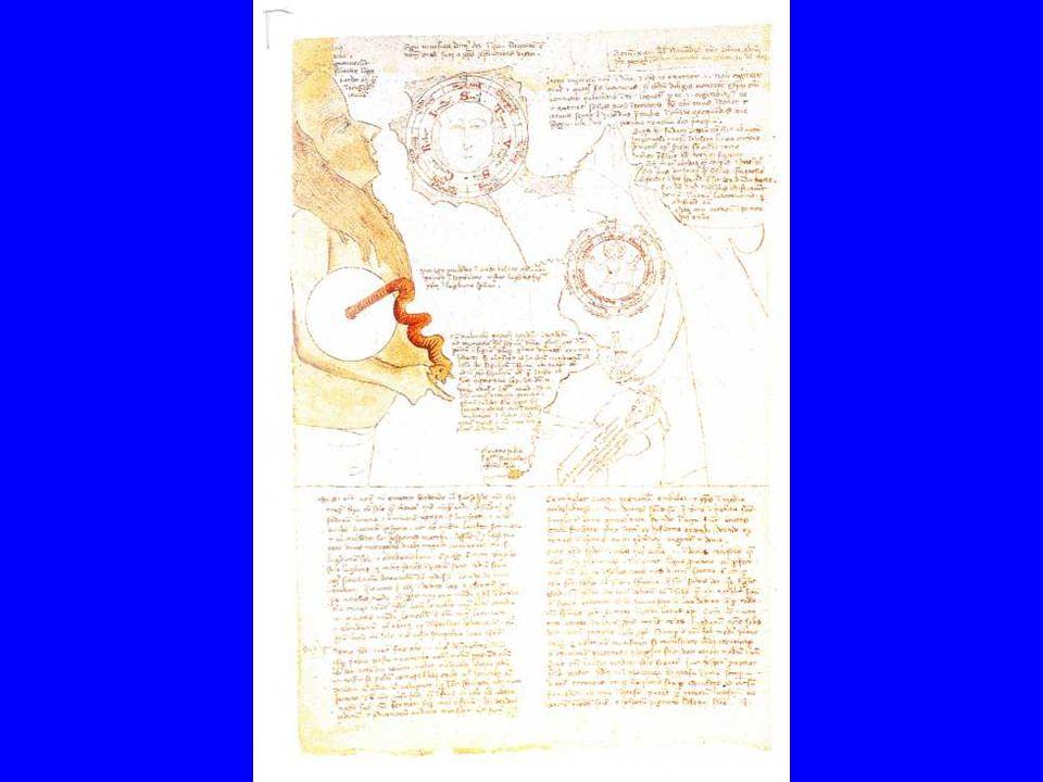 A kifejezés, a képalkotó tevékenység pszichopatológiaiának története most inkább az egyéneken, a művésszé vált betegeken és beteggé vált művészeken keresztül folytatható.