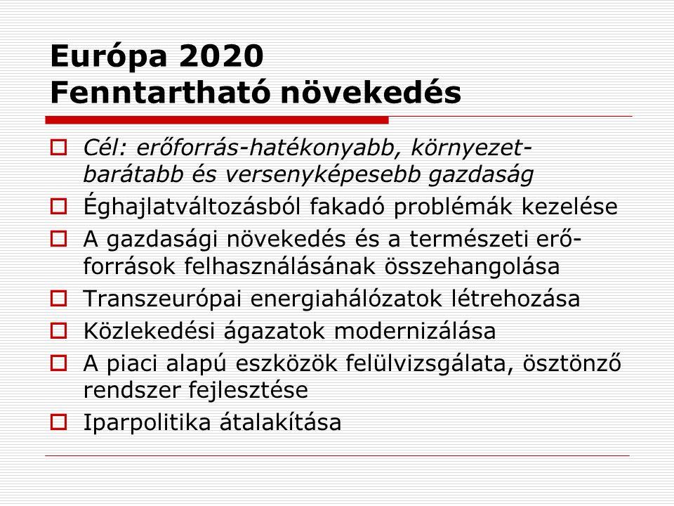 Európa 2020 Fenntartható növekedés  Cél: erőforrás-hatékonyabb, környezet- barátabb és versenyképesebb gazdaság  Éghajlatváltozásból fakadó problémák kezelése  A gazdasági növekedés és a természeti erő- források felhasználásának összehangolása  Transzeurópai energiahálózatok létrehozása  Közlekedési ágazatok modernizálása  A piaci alapú eszközök felülvizsgálata, ösztönző rendszer fejlesztése  Iparpolitika átalakítása