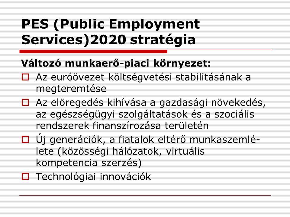 PES (Public Employment Services)2020 stratégia Változó munkaerő-piaci környezet:  Az euróövezet költségvetési stabilitásának a megteremtése  Az elöregedés kihívása a gazdasági növekedés, az egészségügyi szolgáltatások és a szociális rendszerek finanszírozása területén  Új generációk, a fiatalok eltérő munkaszemlé- lete (közösségi hálózatok, virtuális kompetencia szerzés)  Technológiai innovációk