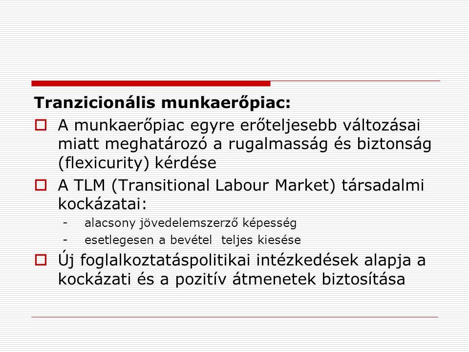 Tranzicionális munkaerőpiac:  A munkaerőpiac egyre erőteljesebb változásai miatt meghatározó a rugalmasság és biztonság (flexicurity) kérdése  A TLM (Transitional Labour Market) társadalmi kockázatai: - alacsony jövedelemszerző képesség - esetlegesen a bevétel teljes kiesése  Új foglalkoztatáspolitikai intézkedések alapja a kockázati és a pozitív átmenetek biztosítása