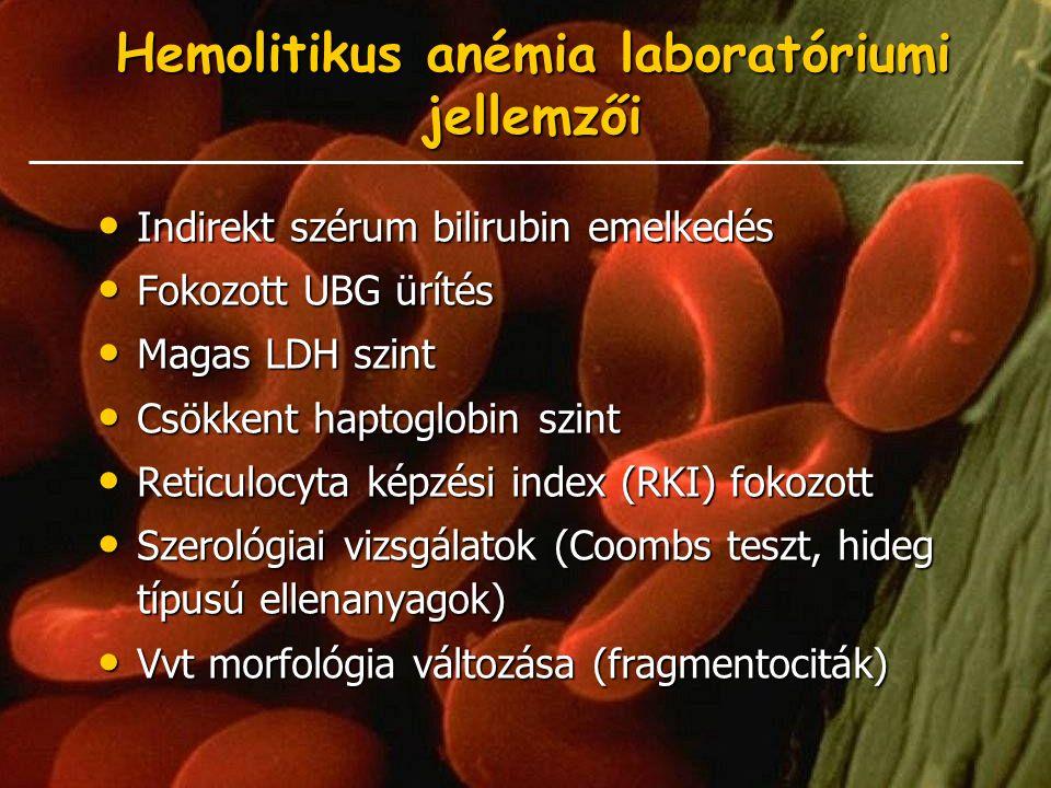 Hemolitikus anémia laboratóriumi jellemzői Indirekt szérum bilirubin emelkedés Indirekt szérum bilirubin emelkedés Fokozott UBG ürítés Fokozott UBG ür