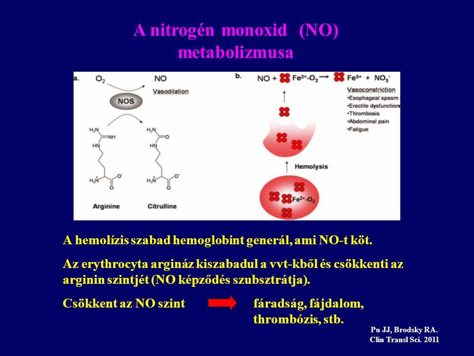 A nitrogén monoxid (NO) metabolizmusa Pu JJ, Brodsky RA. Clin Transl Sci. 2011 A hemolízis szabad hemoglobint generál, ami NO-t köt. Az erythrocyta ar