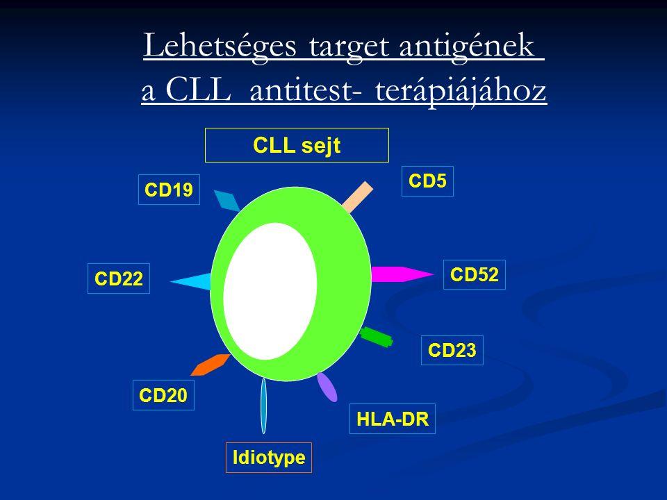 Lehetséges target antigének a CLL antitest- terápiájához CLL sejt CD52 CD5 CD19 CD22 CD20 HLA-DR CD23 Idiotype