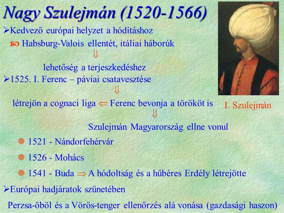  Kedvező európai helyzet a hódításhoz  Habsburg-Valois ellentét, itáliai háborúk  lehetőség a terjeszkedéshez  1525.