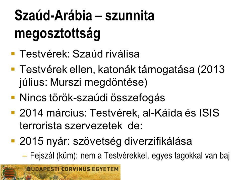 Szaúd-Arábia – szunnita megosztottság  Testvérek: Szaúd riválisa  Testvérek ellen, katonák támogatása (2013 július: Murszi megdöntése)  Nincs török-szaúdi összefogás  2014 március: Testvérek, al-Káida és ISIS terrorista szervezetek de:  2015 nyár: szövetség diverzifikálása –Fejszál (küm): nem a Testvérekkel, egyes tagokkal van baj