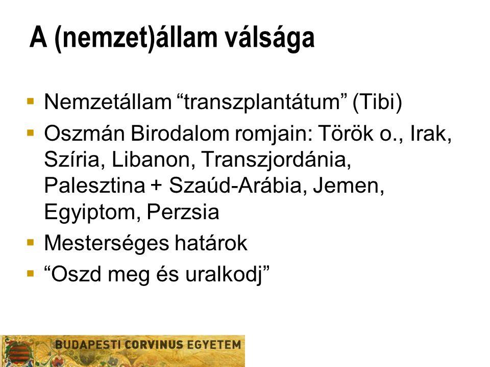 A (nemzet)állam válsága  Nemzetállam transzplantátum (Tibi)  Oszmán Birodalom romjain: Török o., Irak, Szíria, Libanon, Transzjordánia, Palesztina + Szaúd-Arábia, Jemen, Egyiptom, Perzsia  Mesterséges határok  Oszd meg és uralkodj