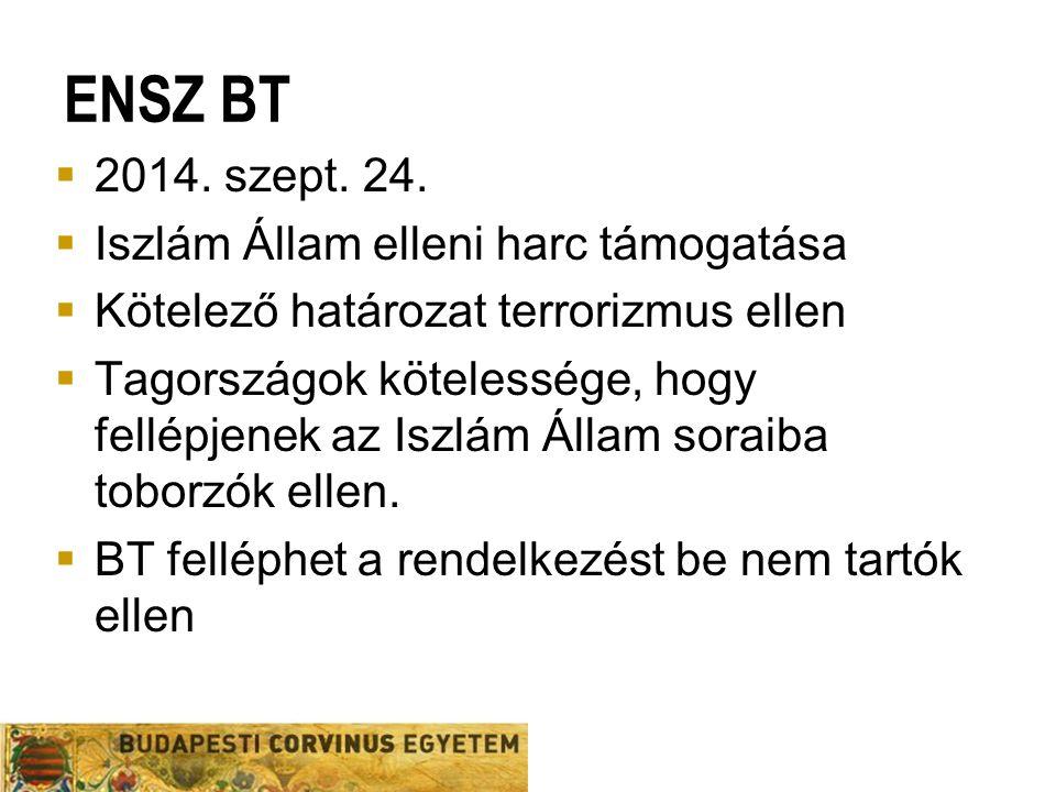ENSZ BT  2014. szept. 24.