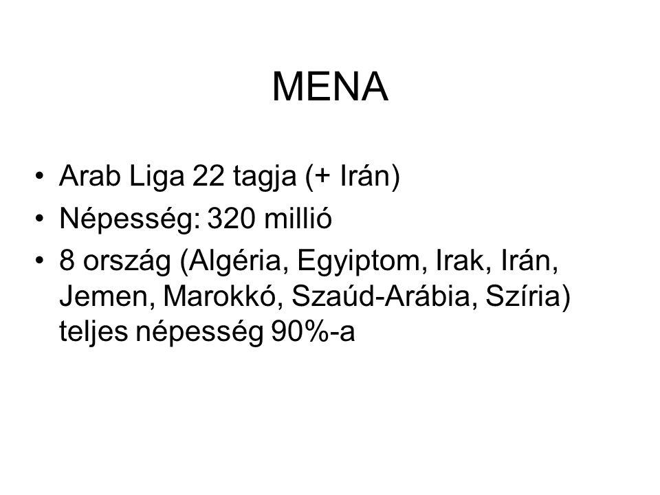 Arab Liga 22 tagja (+ Irán) Népesség: 320 millió 8 ország (Algéria, Egyiptom, Irak, Irán, Jemen, Marokkó, Szaúd-Arábia, Szíria) teljes népesség 90%-a