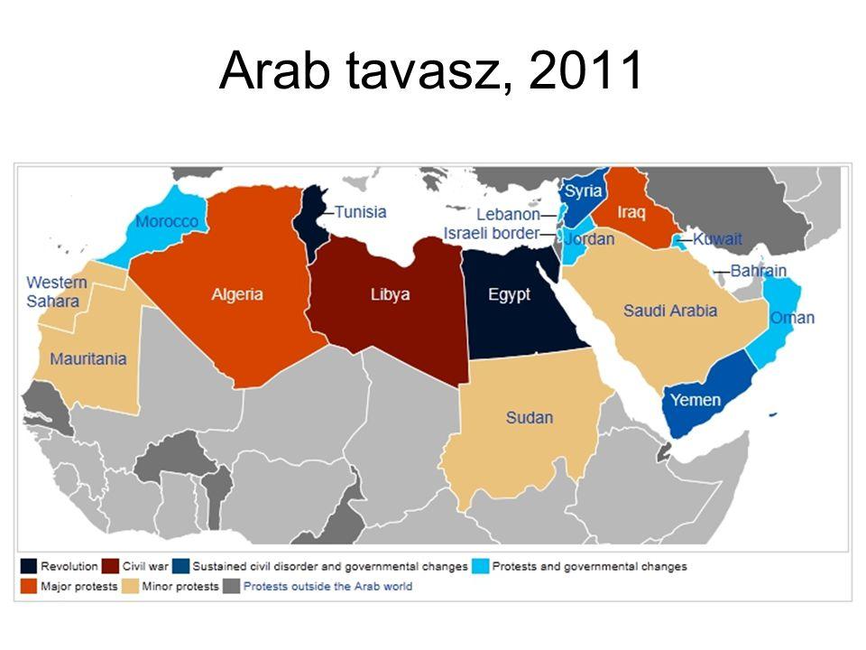 Arab tavasz, 2011
