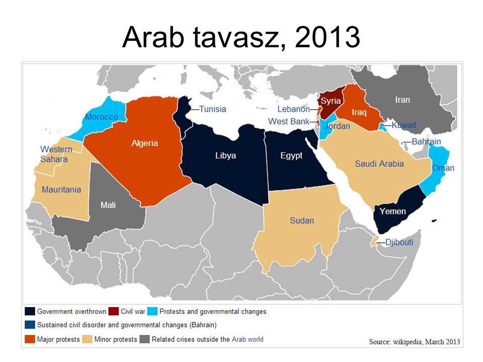 Arab tavasz, 2013