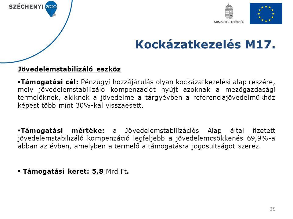Kockázatkezelés M17.
