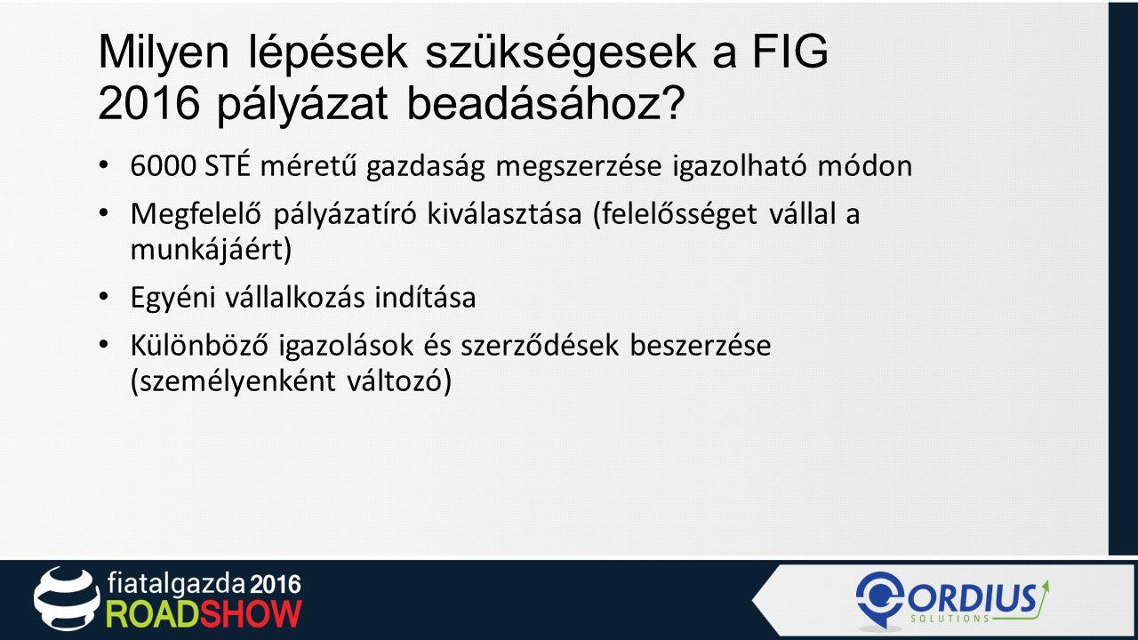 Milyen lépések szükségesek a FIG 2016 pályázat beadásához.