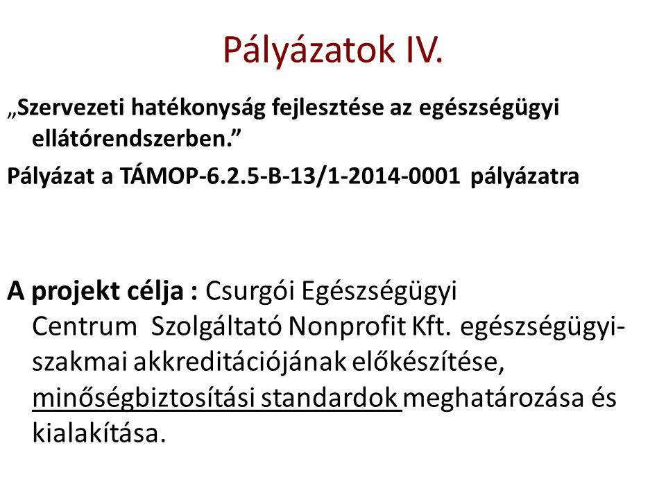 """""""Szervezeti hatékonyság fejlesztése az egészségügyi ellátórendszerben."""" Pályázat a TÁMOP-6.2.5-B-13/1-2014-0001 pályázatra A projekt célja : Csurgói E"""