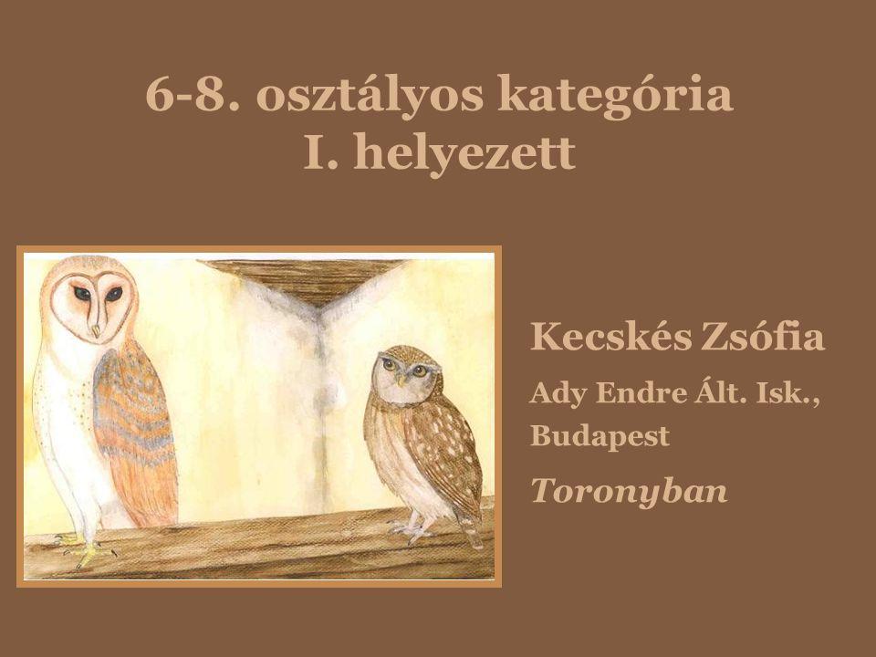 6-8. osztályos kategória I. helyezett Kecskés Zsófia Ady Endre Ált. Isk., Budapest Toronyban